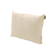 NaturaOrganics Toddler Pillow