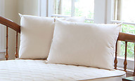 Naturepedic Organic Kapok/Cotton Pillow