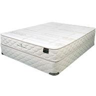 NaturaOrganics EcoRenew Mattress